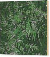 Kentucky Landscape Wood Print