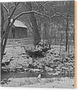 Kentucky Snow Wood Print