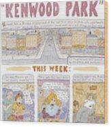 Kenwood Park Wood Print