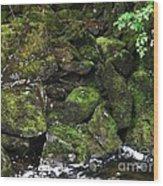 Ketchikan Riverbank Wood Print