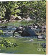 Keuka Seneca Outlet Trail Wood Print