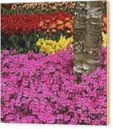 Keukenhof Floral Strata Wood Print