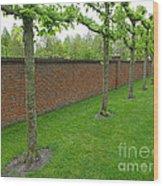 Keukenhof Gardens 11 Wood Print