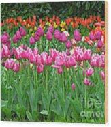 Keukenhof Gardens 14 Wood Print