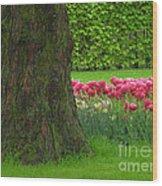 Keukenhof Gardens 23 Wood Print