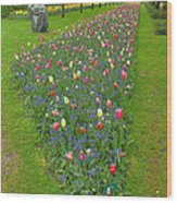 Keukenhof Gardens 26 Wood Print