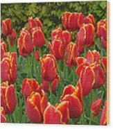 Keukenhof Gardens 28 Wood Print