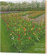 Keukenhof Gardens 29 Wood Print