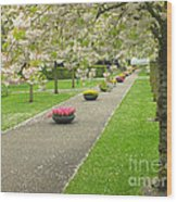 Keukenhof Gardens 32 Wood Print