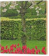 Keukenhof Gardens 34 Wood Print