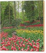 Keukenhof Gardens 53 Wood Print