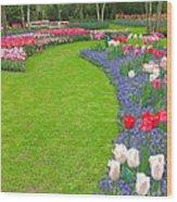 Keukenhof Gardens 54 Wood Print