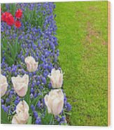 Keukenhof Gardens 55 Wood Print
