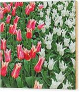 Keukenhof Gardens 7 Wood Print