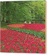 Keukenhof Gardens 88 Wood Print