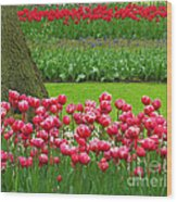 Keukenhof Gardens 91 Wood Print