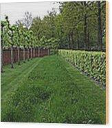 Keukenhof Gardens Panoramic 10 Wood Print