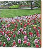 Keukenhof Gardens Panoramic 49 Wood Print