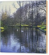 Keukenhof Lake Scene Wood Print
