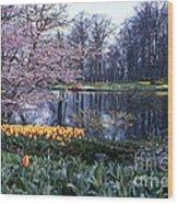 Keukenhof Spring Wood Print