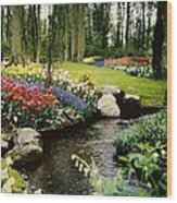 Keukenhof Tulip Gardens Wood Print