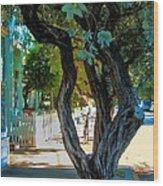 Key West Beauty Wood Print by Claudette Bujold-Poirier