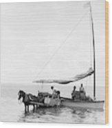 Key West Cart & Boat, C1890 Wood Print