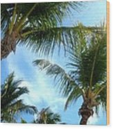 Key West Perspective Of View Wood Print