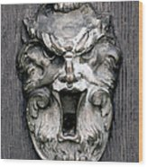 Keyhole Wood Print