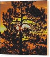 Keystone Pine Wood Print