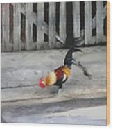 Keywest Florida Rooster Wood Print