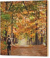 Kid With Backpack Walking In Fall Colors Wood Print