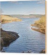 Kielder Water Inlet Wood Print