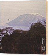 Kilimanjaro In The Morning Wood Print