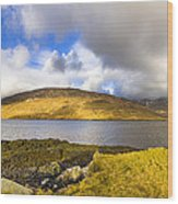 Killary Harbour On The Irish West Coast Wood Print by Mark E Tisdale
