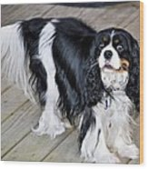 King Charles On The Boardwalk Wood Print