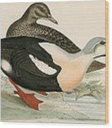King Duck Wood Print