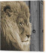 King In Sepia Wood Print