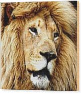 King Ludwig Xviiii Wood Print