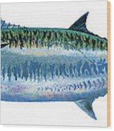 King Mackerel Wood Print by Carey Chen