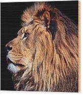 King Of Beast Wood Print