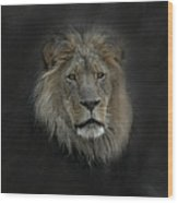 King Of Beasts Portrait Wood Print