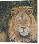 King Of The African Savannah Wood Print