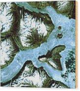 King Oscar Fjord Greenland Wood Print
