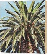 King Palm Wood Print