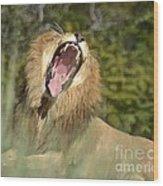 King Size Yawn Wood Print