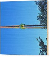 Kings Dominion - Drop Tower - 12126 Wood Print by DC Photographer