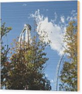 Kings Dominion - Hypersonic Xlc - 12121 Wood Print by DC Photographer