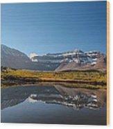 Kings Peak And The Pond Wood Print