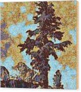 Kings River Canyon Colorized Wood Print